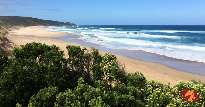 Why the Great Ocean Road is better in winter